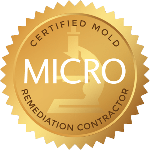 certified-mold-remediation-contractor